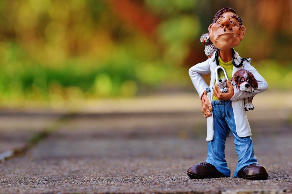 人形の医者